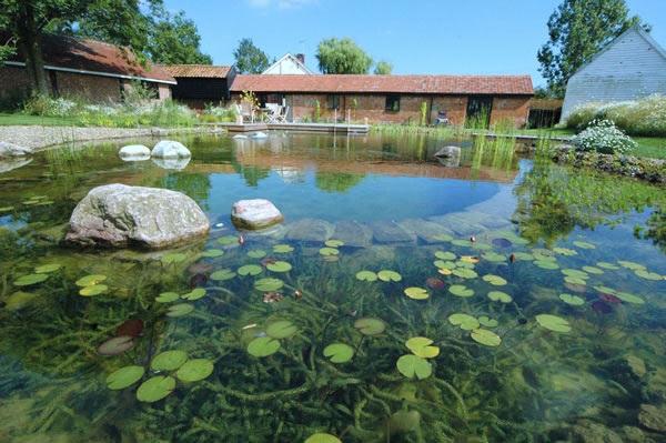 Piscinas naturais verde org nico for Filtro piscina natural
